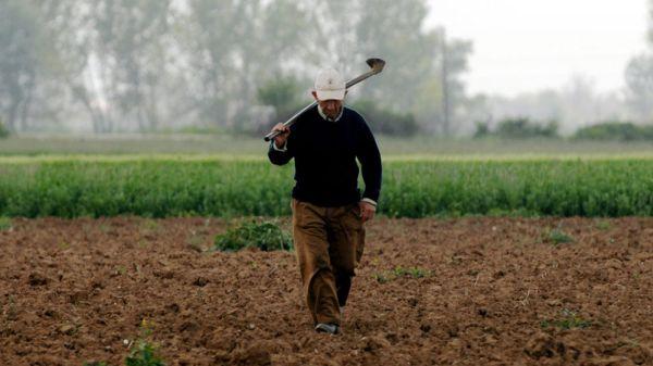 φορολόγηση-αγροτών-οδηγός-για-τις-επ